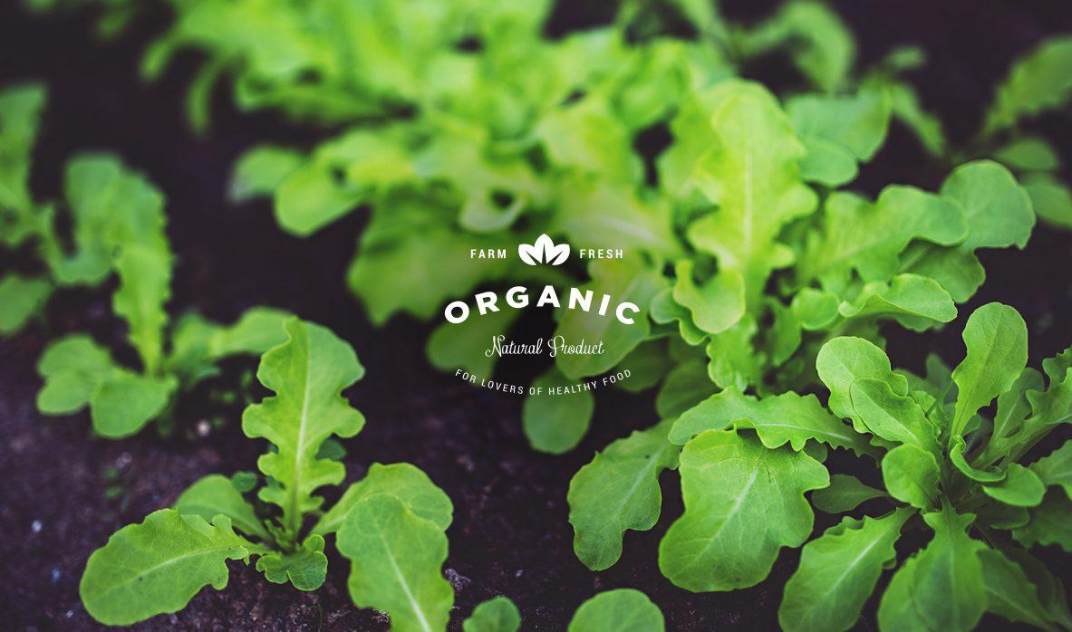 Organic & Natural